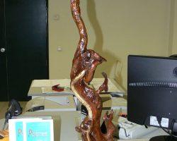EMARP - Exposição de Eduardo Silva - jan 2014 - 04