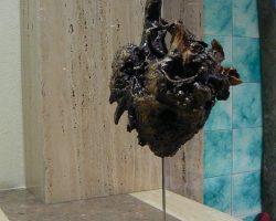 EMARP - Exposição de Eduardo Silva - jan 2014 - 05