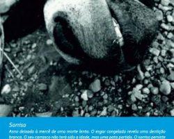 EMARP - Exposição de João Tatá Regala - mar 2014 - cartaz
